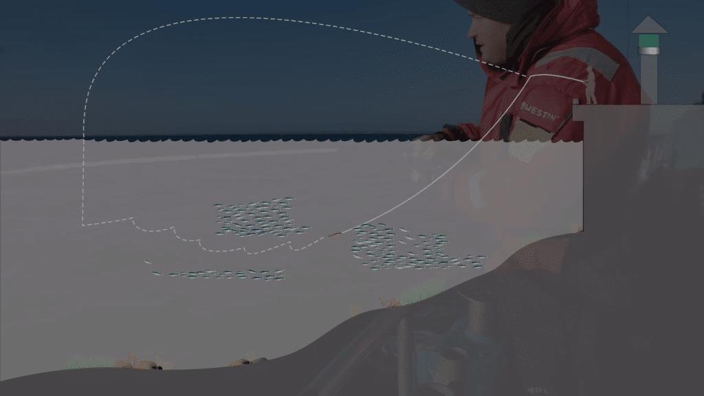 Sildefiskeri teknik