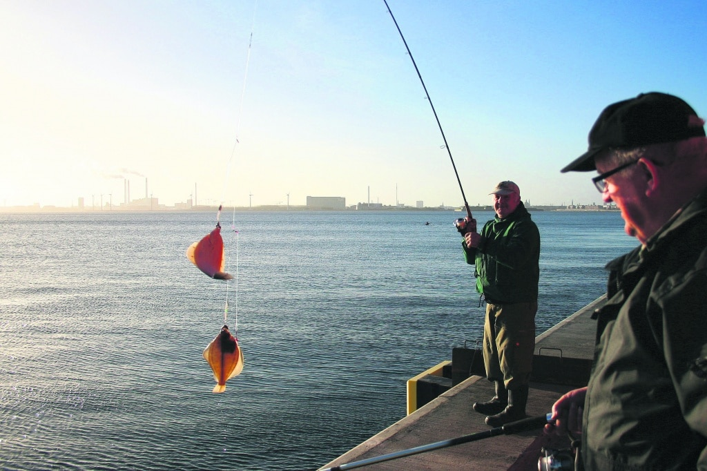 Fladfiskeforfang