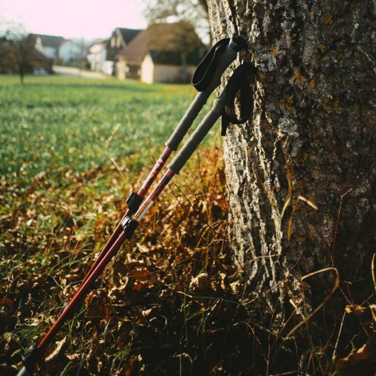 Vandrestave der står op af et træ
