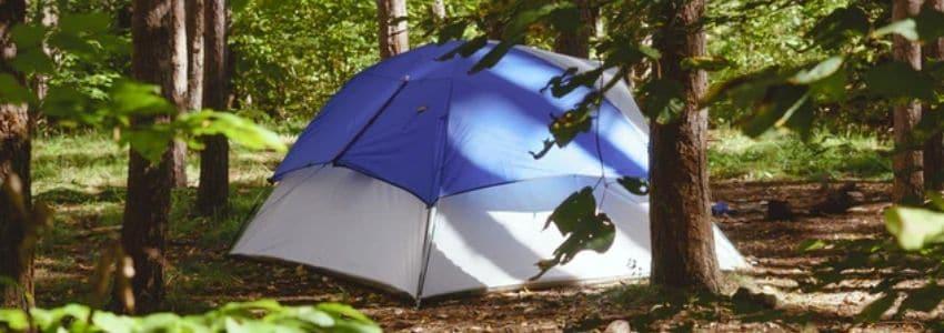 3-4 personers telt i skov