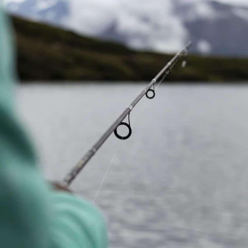 Lang fiskestang med hav i baggrund