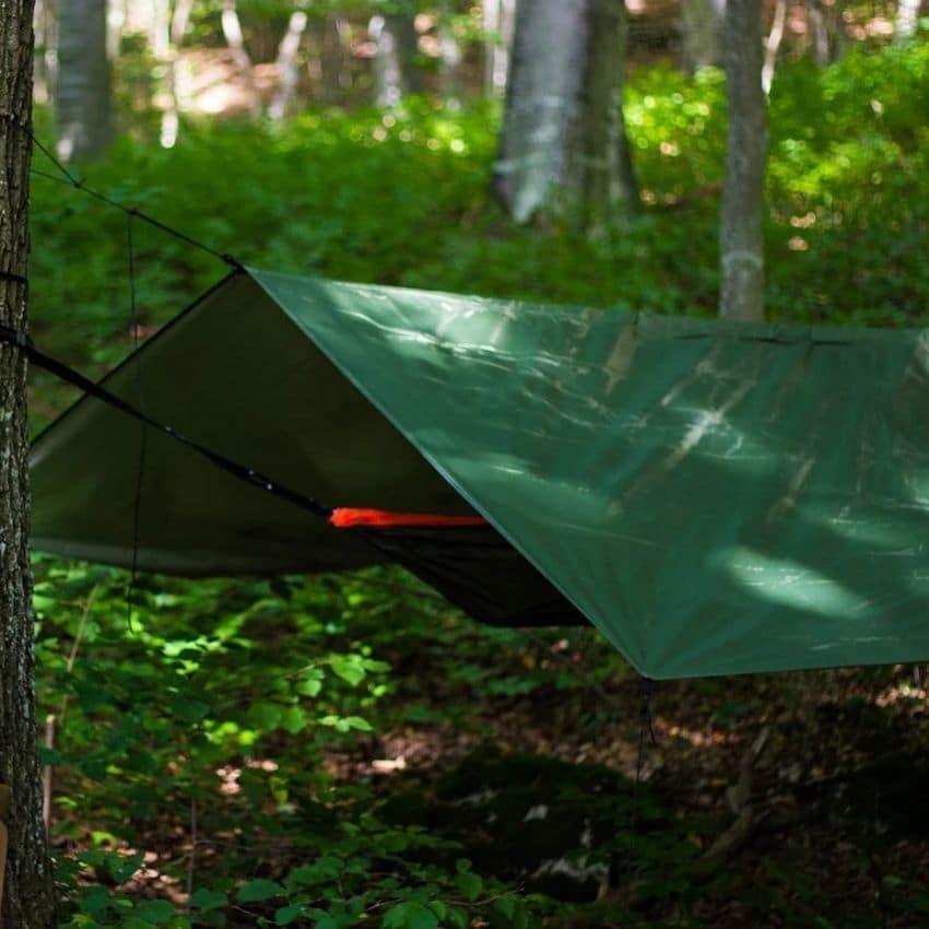 Grøn tarp i skov